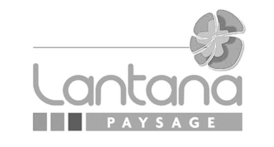 Lantana Paysage